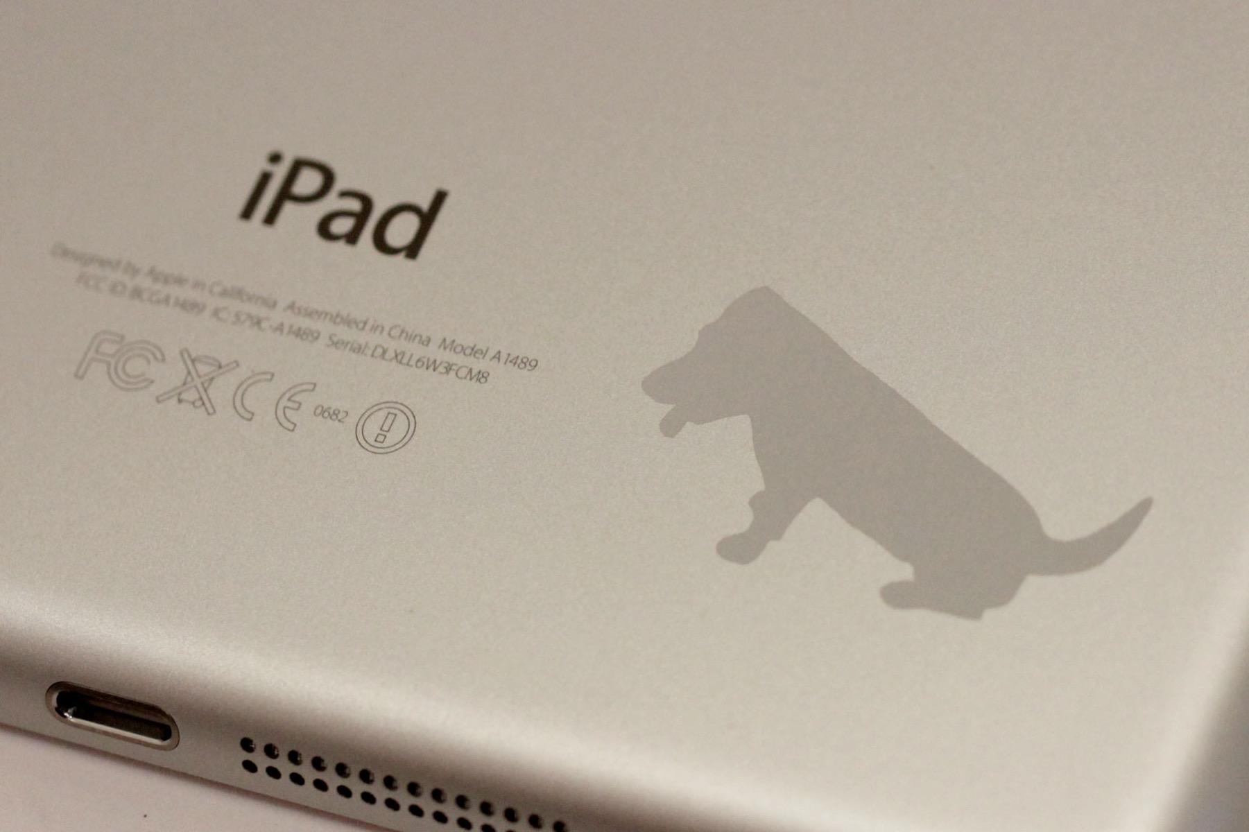 iPad Gravierun